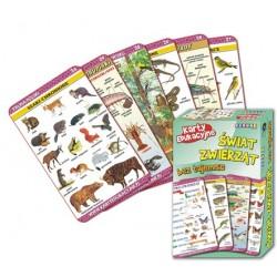 Karty EdukacyjneVISUAL SYSTEM - Świat zwierząt bez tajemnic