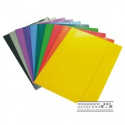 Teczka A3 kolorowa