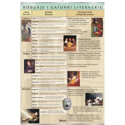 Plansza VISUAL SYSTEM - Rodzaje i gatunki literackie