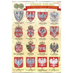 Historia i kultura Polski