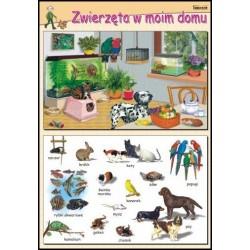 Plansza Zwierzęta w moim domu