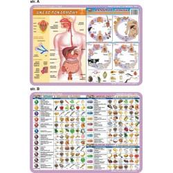 PODKŁADKA EDUKACYJNA 40x30 cm - Anatomia Człowieka/Mikrobiologia 056
