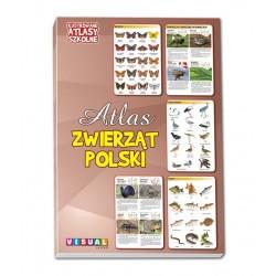 Ilustrowane Atlasy Szkolne - Atlas Zwierząt Polski