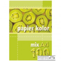 Papier ksero A4 A'100 kolor mix