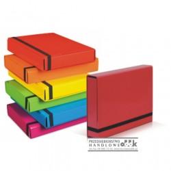 Teczka A4 VauPe Caribic Box
