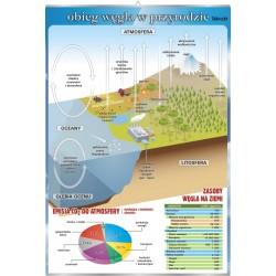 PlanszaVISUAL SYSTEM - Obieg węgla w przyrodzie