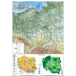 Plansza VISUAL SYSTEM - Polska - mapa ogólnogeograficzna + mapki gleb i zalesienia