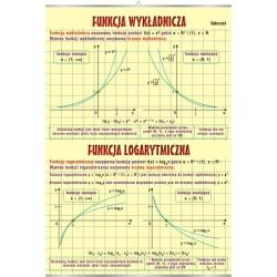 PlanszaVISUAL SYSTEM - Funkcja wykładnicza i logarytmiczna
