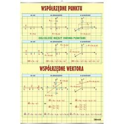 Plansza VISUAL SYSTEM - Współrzędne punktu i wektora