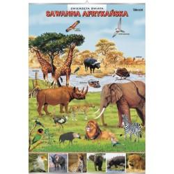 PlanszaVISUAL SYSTEM - Sawanna afrykańska