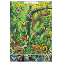 PlanszaVISUAL SYSTEM - Dżungla amazońska