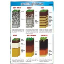 PlanszaVISUAL SYSTEM - Profile glebowe