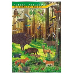 PlanszaVISUAL SYSTEM - Mieszkańcy lasów- seria polska przyroda