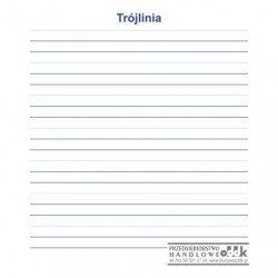 Trójlinia - nakładka magnetyczna