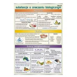 PlanszaVISUAL SYSTEM - Substancje chemiczne o znaczeniu biologicznym