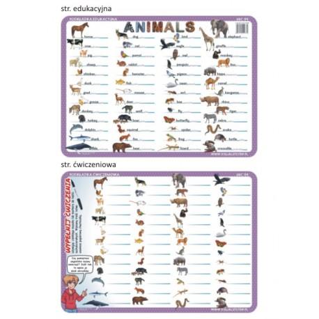 Animals ABC 04 - podkładka ćwiczeniowa